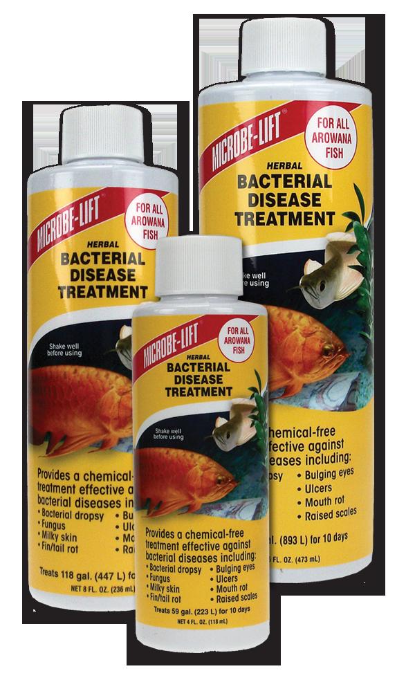 Herbal bacterial disease treatment arowana microbe lift for Fish odor syndrome natural remedies