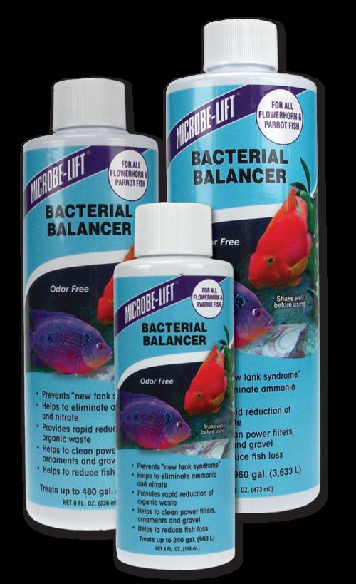 Herbal Bacterial Disease Treatment - Flowerhorn & Parrot Fish